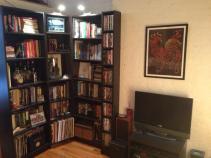Living room - bookshelves & tv
